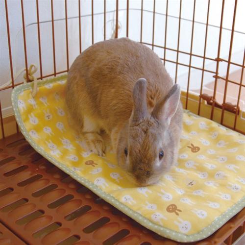 ウサギのマットほりほり
