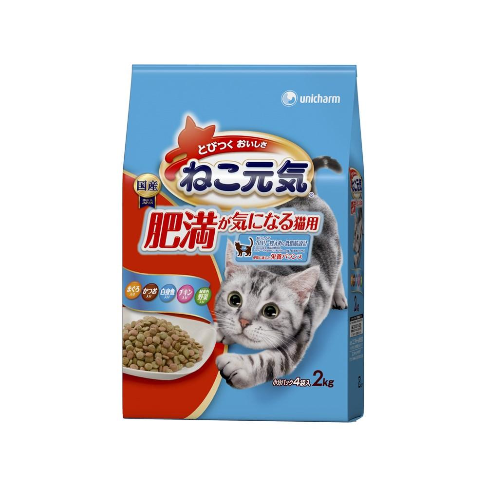 ※※※ねこ元気肥満が気になる猫用まぐろ・かつお・白身魚・チキン・緑黄色野菜入り2.0kg【キャットフード ドライ】