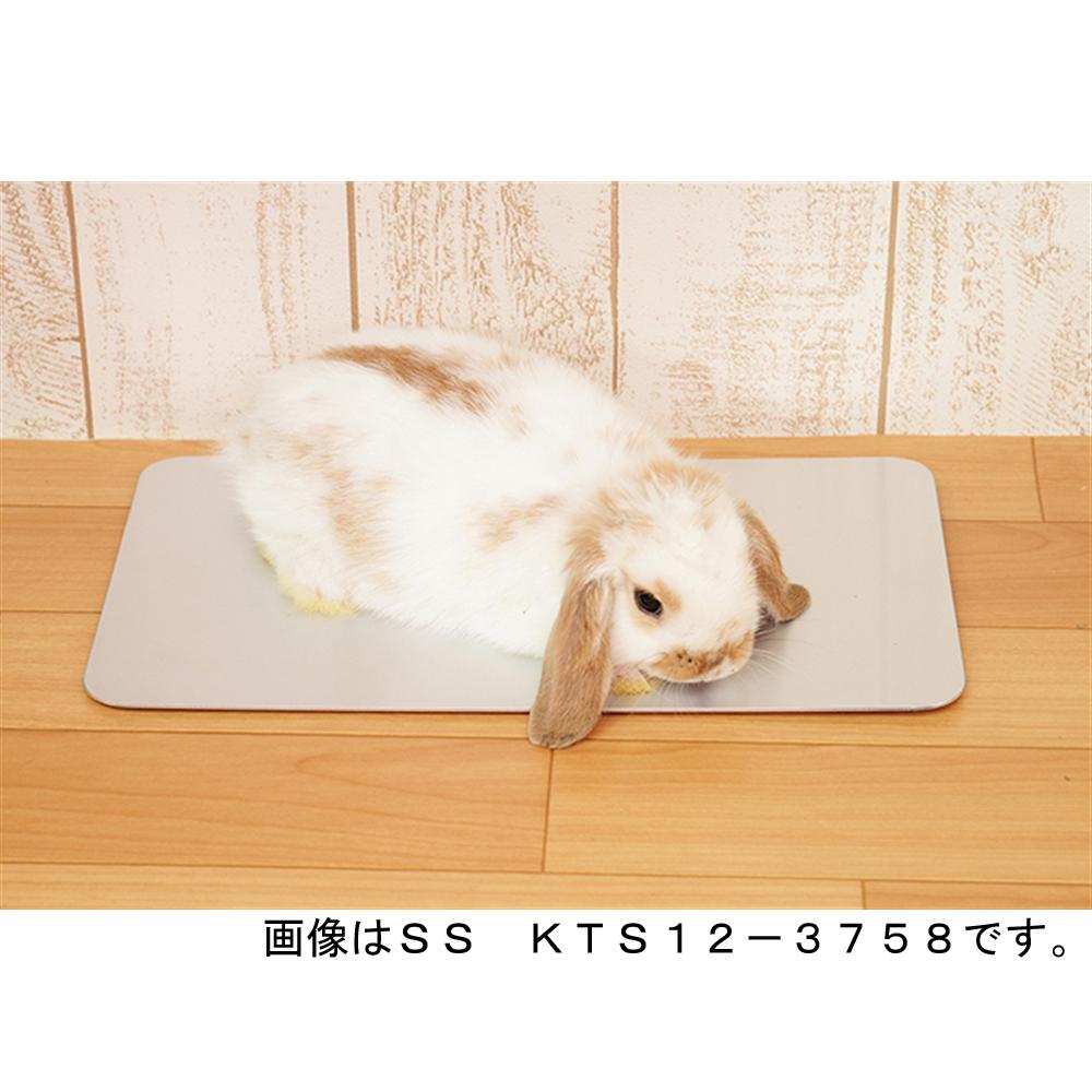 ひんやりプレート 小動物用 KTS12−3741