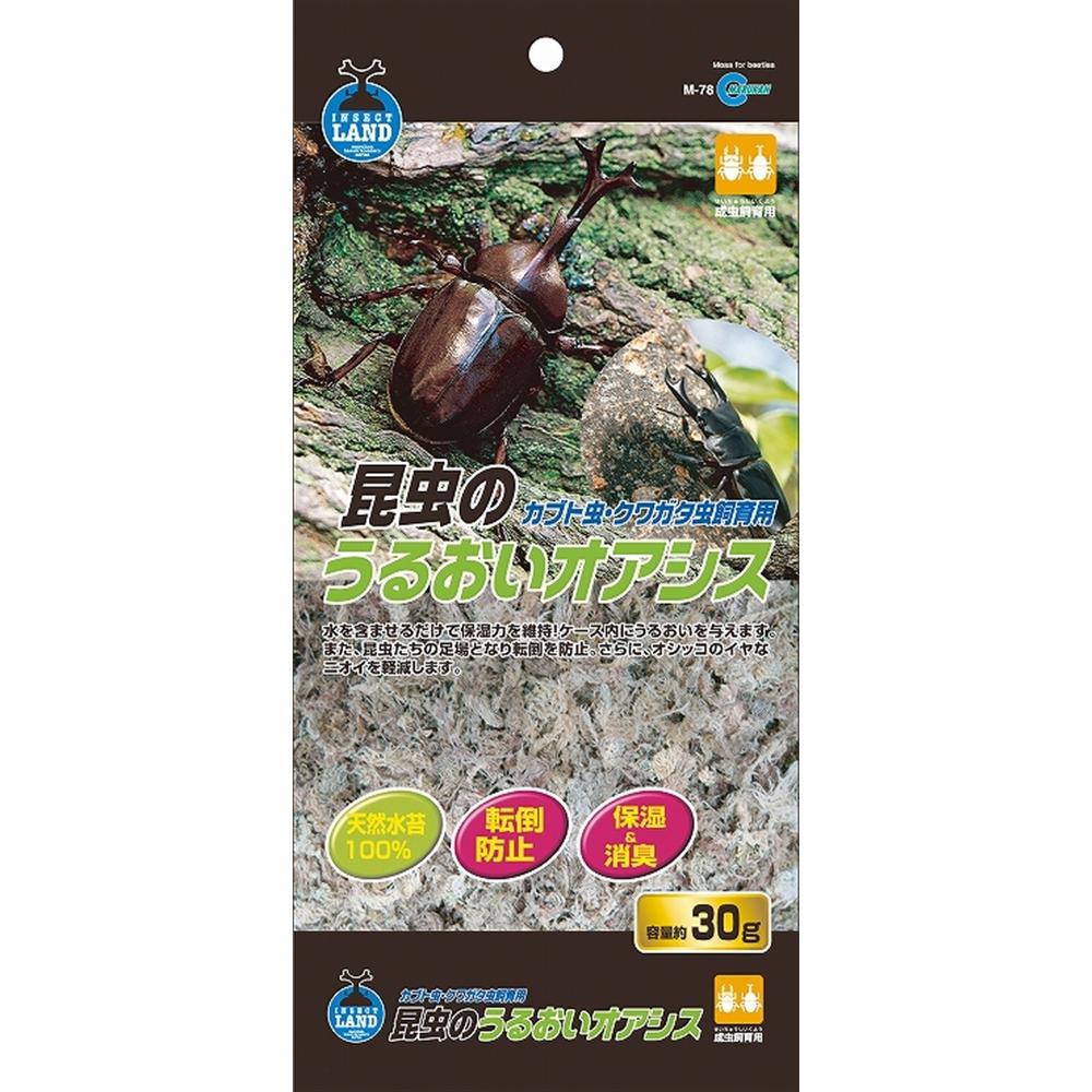 昆虫うるおいオアシス 約30g