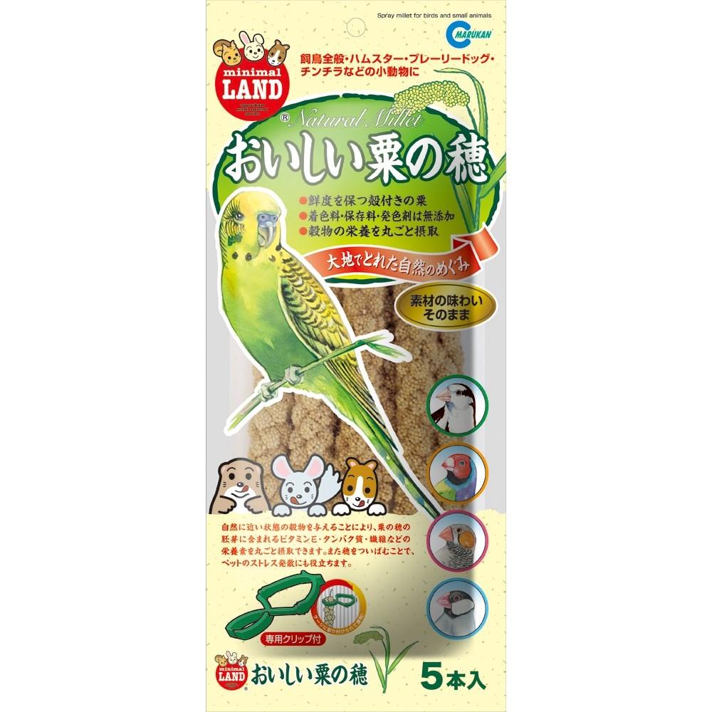 おいしい粟の穂 5本入り(専用クリップ付)