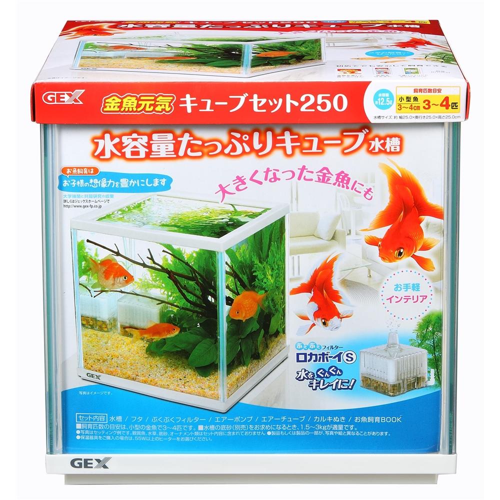金魚元気キューブ セット 250
