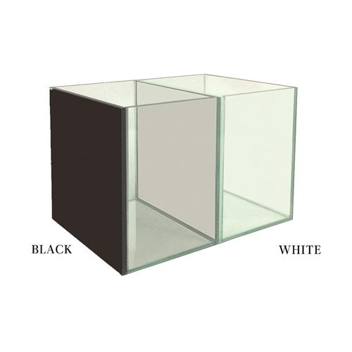 グラステリア ベタ ブラック