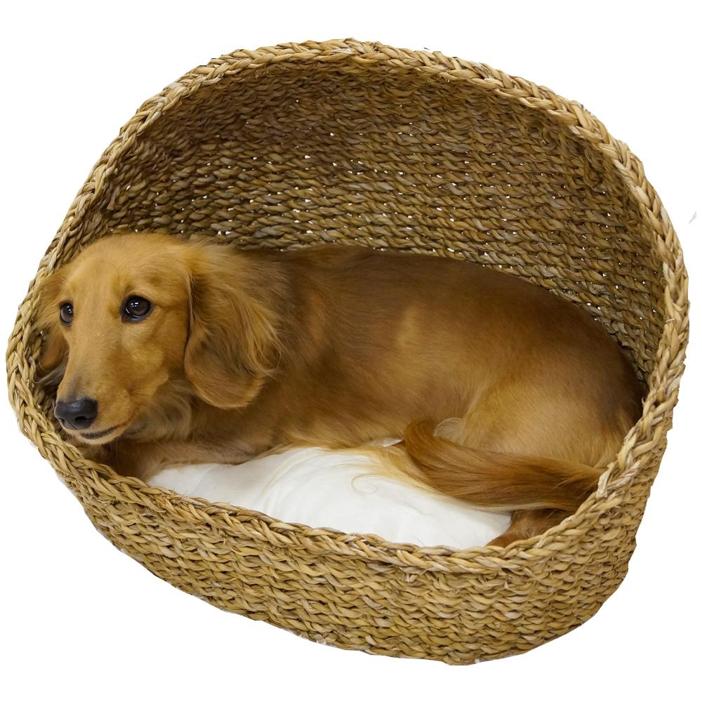 アジアンベッド スタンダード ハーフドーム犬用