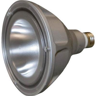 PHOENIX ビーム電球型LEDランプ LDR100200V8LWE2612