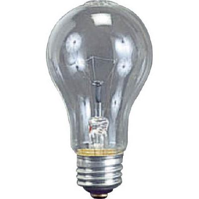 ハタヤ 耐振電球60W (ILI、KL型用) TD60