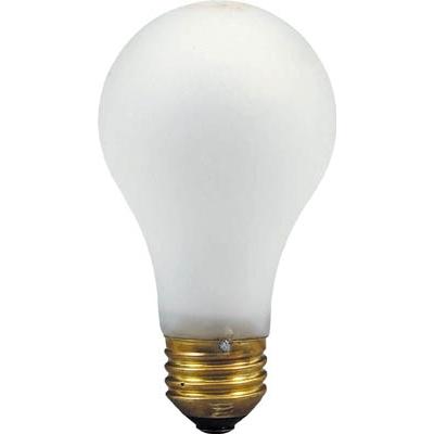 ハタヤ 防水電球100W (WPB型用) WP100